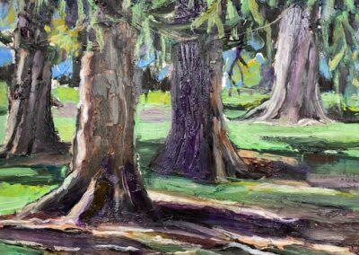 """""""Tree Canopy"""""""
